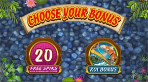 Lucky Koi: Choose Your Bonus